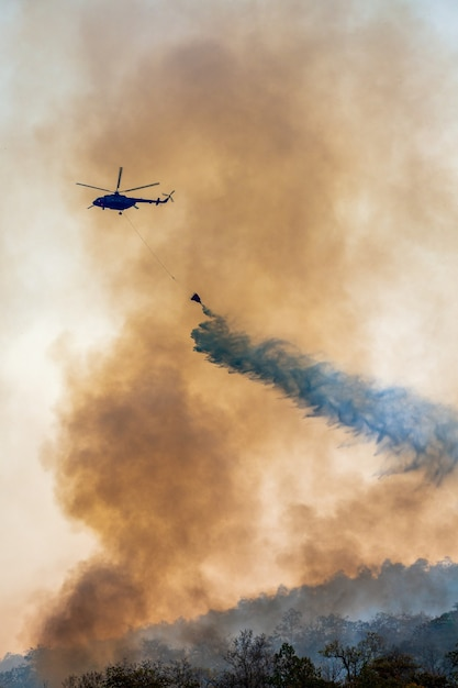 Firefithing helicopter dumps water on forest fire Premium Photo