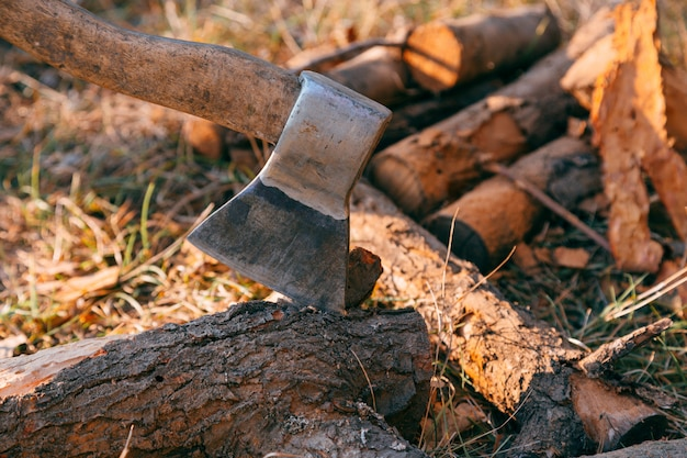 Firewood and ax in wood. ax cleaver and a lot of firewood, tree, forest, split, cut, fuel, work, industry, material, raw, heat, renewable, saw, forestry, cut-resistant Premium Photo