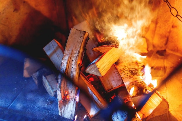 Firewood burn in the fireplace. Premium Photo