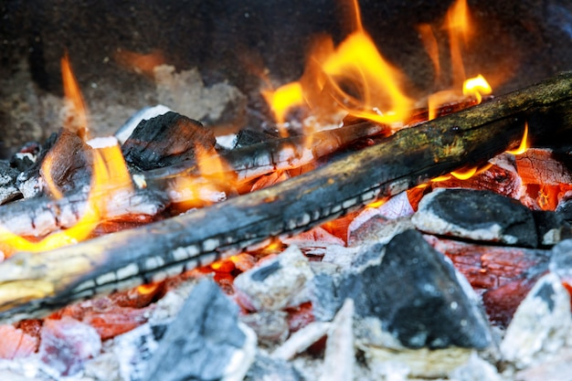 Firewood burning in a brazier on a bright yellow flame a tree, dark gray coals inside a metal brazier. Premium Photo