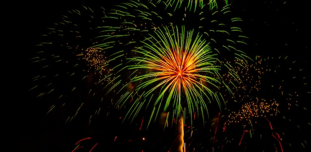 Fireworks in the sky at suan luang rama 9 thailand. Premium Photo