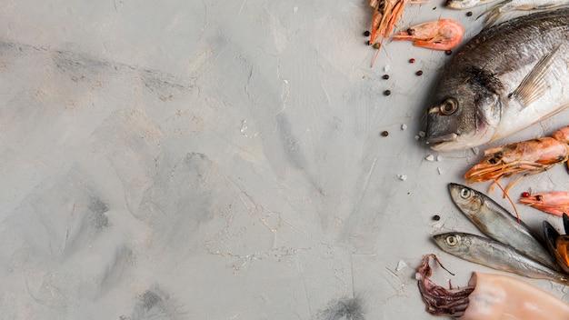 大理石のコピースペースの背景に魚とエビ Premium写真