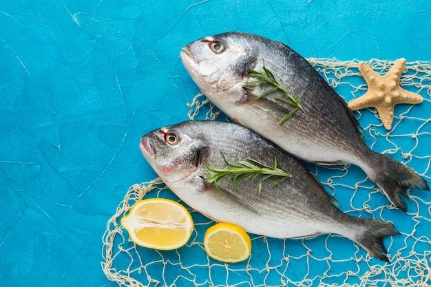 레몬 평면도와 물고기 배열 프리미엄 사진