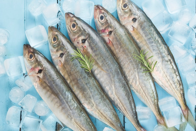 Fish mackerel,raw mackerel with and spices Premium Photo