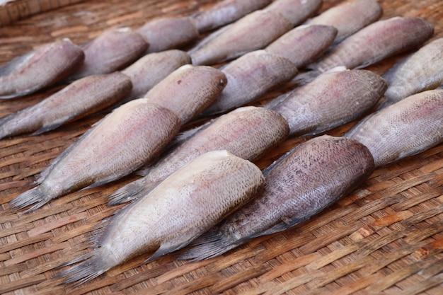 Fish in the market Premium Photo