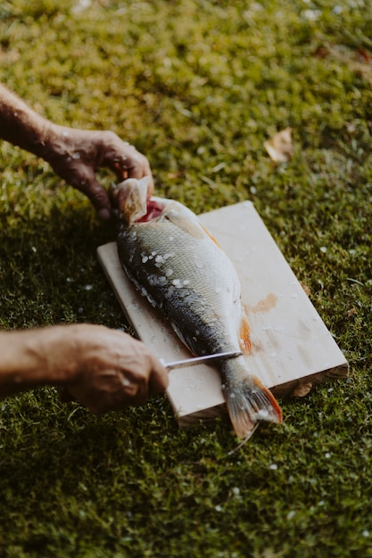 Fisherman holding fish on a cutting board Premium Photo
