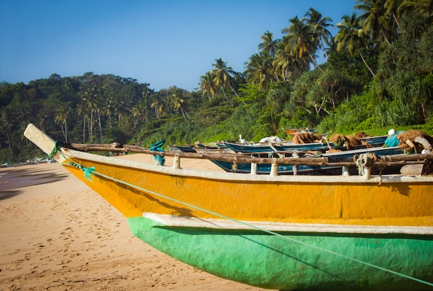 Fishing boat on a tropical beach with palm trees Premium Photo