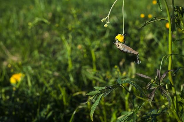 Fishing lure with fresh yellow flower Free Photo