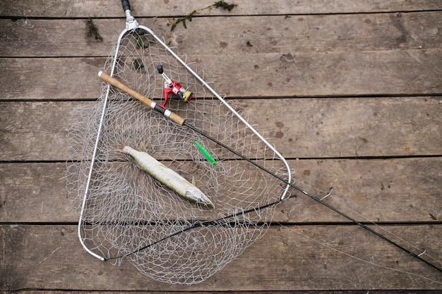 Fishing rod and fresh water fish in the fishing net Free Photo