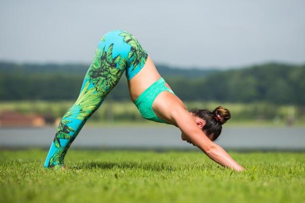 夏に緑豊かな公園でヨガのエクササイズとスポーツウェアでリラックスするフィットネス女性 無料写真