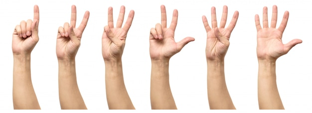 Five counting male hands isolated on white Premium Photo