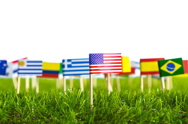 Flags of different countries punctured on a lawn Free Photo