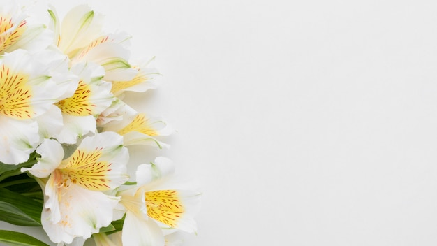 Flat lay alstroemeria bouquet with copy-space Premium Photo