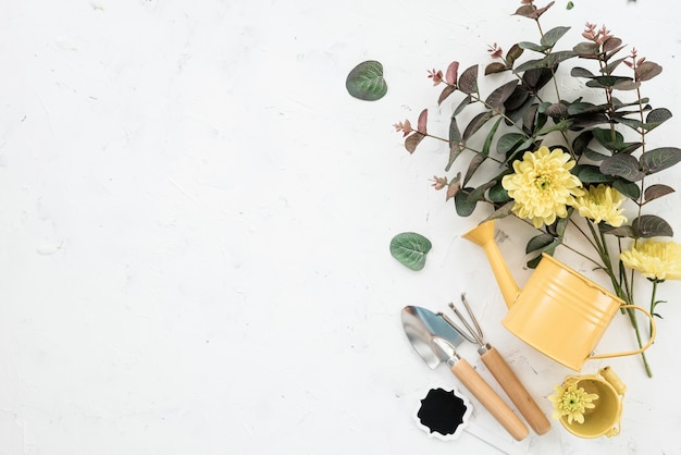 Плоская планировка садовых инструментов и цветущих цветов копией пространства Premium Фотографии