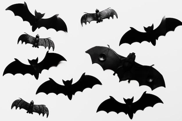 Flat lay arrangement with bats Free Photo