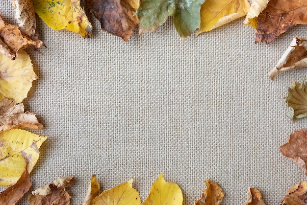 Flat lay arrangement with leaves on sack texture Free Photo