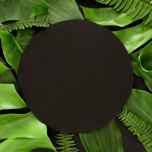Piatto di laici assortimento di foglie con copia spazio Foto Gratuite