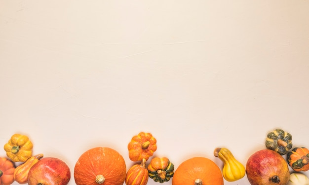 Flat lay autumn food frame with pumpkins Free Photo