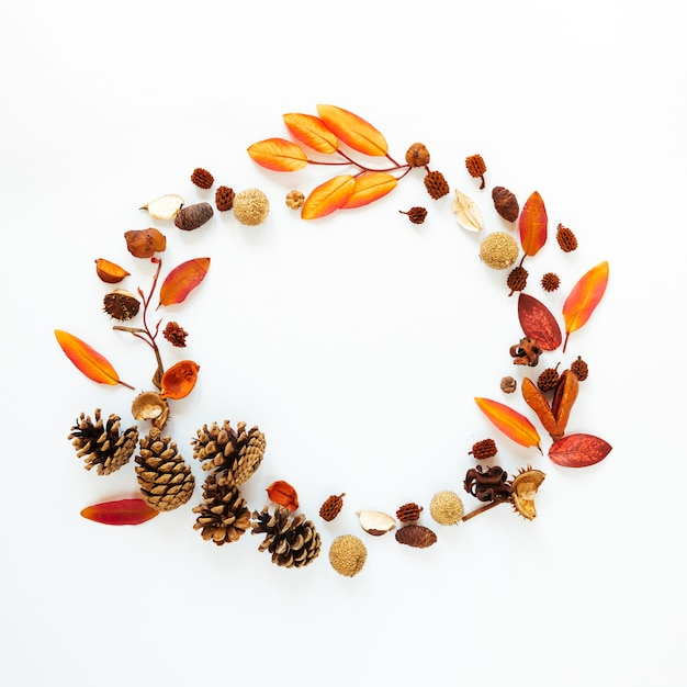 Flat lay autumn leaves with copy space Free Photo