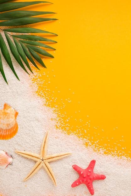 コピースペースを持つフラットレイアウトビーチコンセプト 無料写真