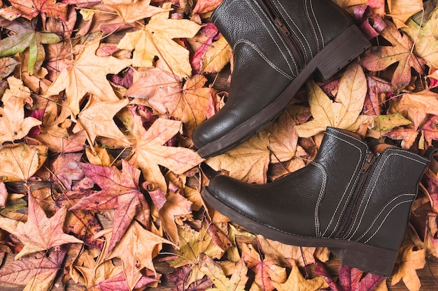 Flat lay boots on leaves background Free Photo