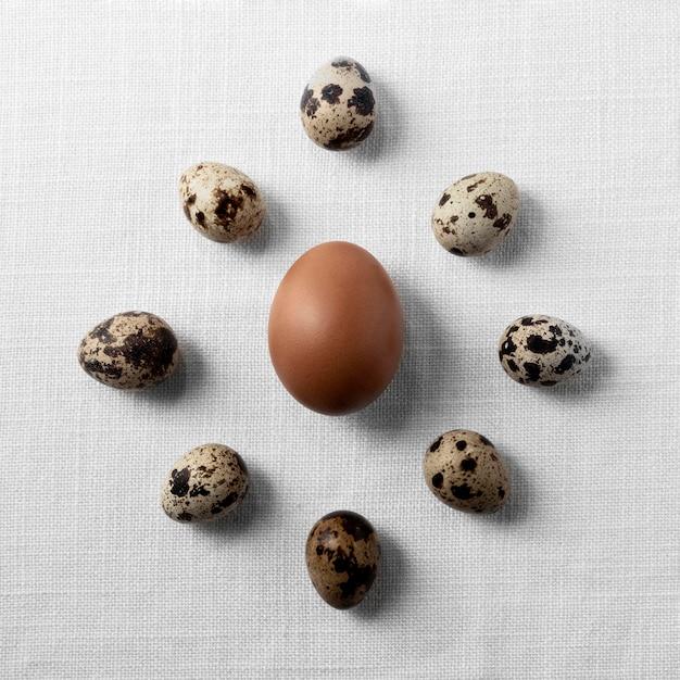 Плоские кладут куриные и перепелиные яйца на стол Premium Фотографии