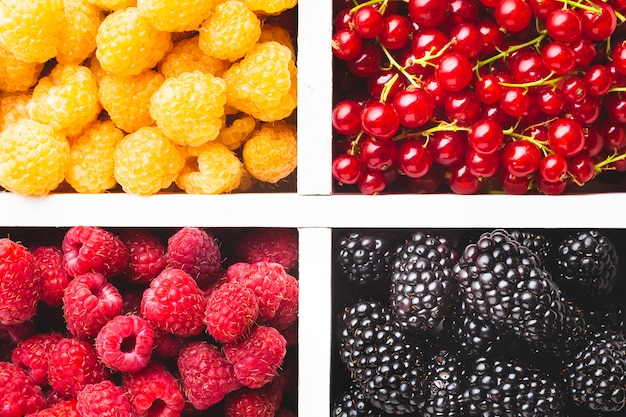 Flat-lay close-up of fresh berries in tray Free Photo