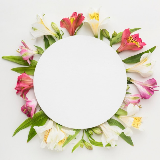 Flat lay colorful alstroemeria with blank circle Premium Photo