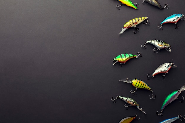 Flat lay of colorful fish bait with copy space Free Photo