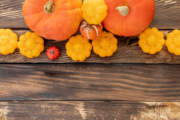 Flat lay colorful pumpkins with copy space Free Photo