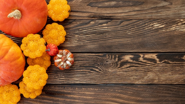 Flat lay colourful pumpkins on wooden background Free Photo