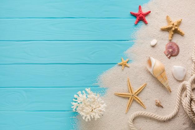 Flat lay composition sand and seashells Premium Photo