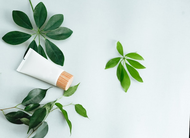 Flat lay composition with cosmetic products.natural cosmetics and green leaves Premium Photo