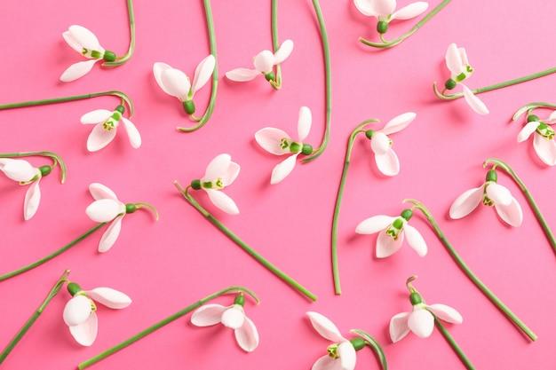 色付きの背景、テキスト用のスペースにスノードロップの花とフラットレイアウト構成 Premium写真