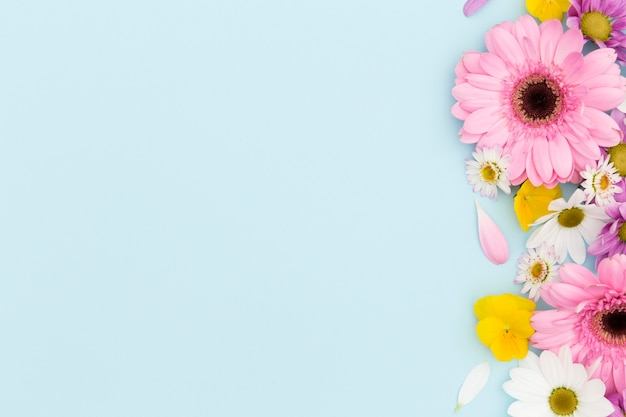 Flat lay floral frame with blue background Free Photo