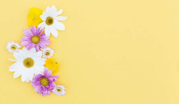 Flat lay floral frame with yellow background Free Photo