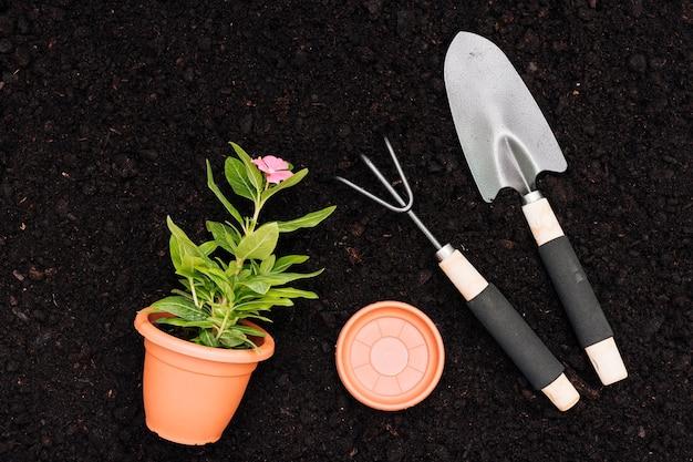 Flat lay flower pot on soil background Free Photo