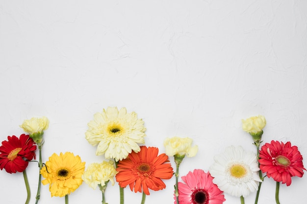 Flat lay of flowers with copyspace Free Photo