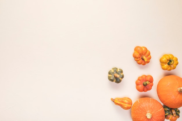 Flat lay food frame with pumpkins Free Photo