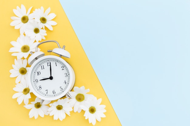 Flat lay frame with clock and daisies Free Photo
