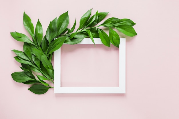 Flat lay of frame with leaves decoration Free Photo