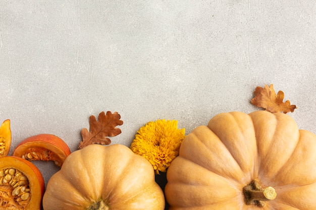 Flat lay frame with pumpkins and leaves Free Photo