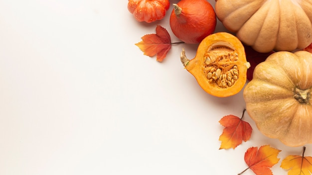 Flat lay frame with pumpkins and white background Free Photo