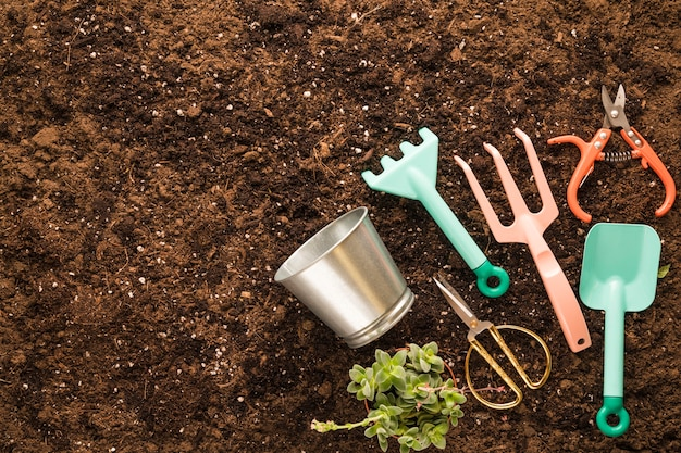 Flat lay of garden tools with copyspace Free Photo