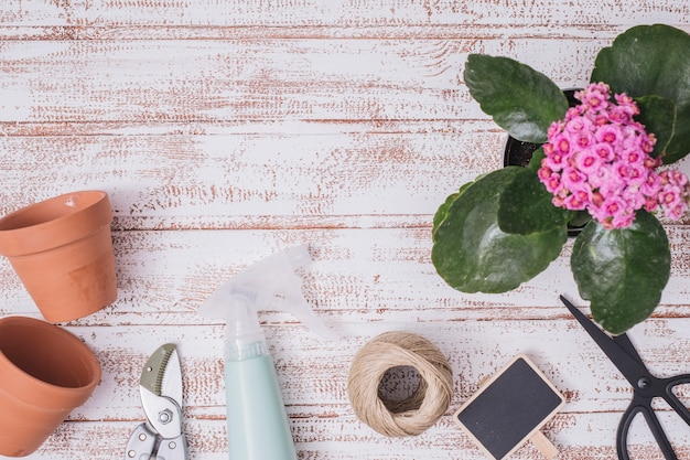 Flat lay gardening concept with copyspace Free Photo
