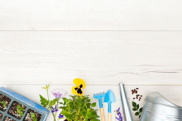 Flat lay gardening tools and plant on wooden background with copy space Free Photo
