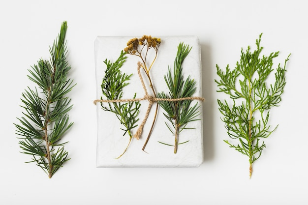 Flat lay of gift with string and fern Free Photo