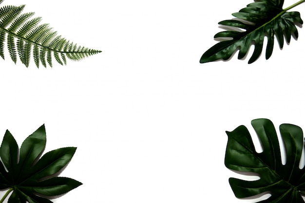 Flat lay of green tropical leaves on white background with copy space. Premium Photo