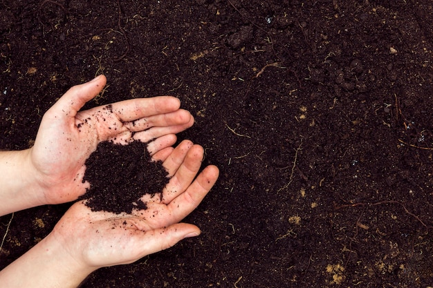 Плоские лежали руки с почвой и копией пространства Бесплатные Фотографии