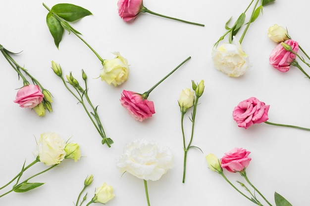 Flat lay mini roses arangement Free Photo